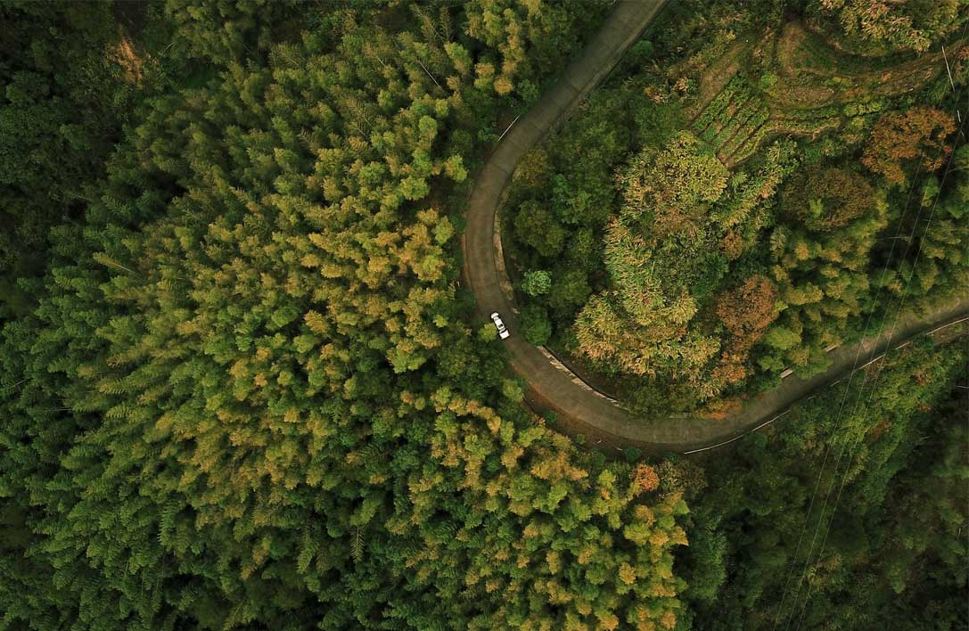 Lone car drives on mountain road in the trees