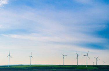 Windmills in green field with blue sky